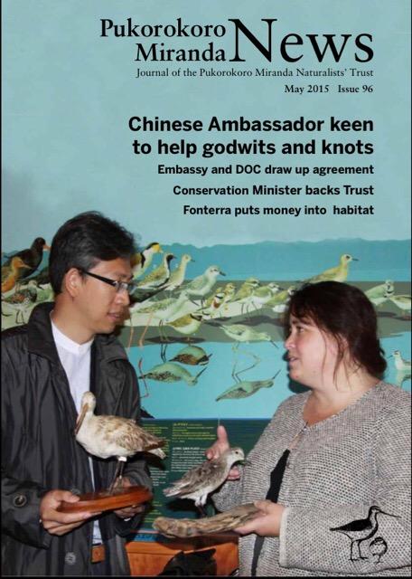 Pukorokoro Miranda Shorebird Centre Red Knot China partnership